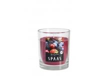 Lõhnaküünal Spaas klaasis 25h Marjad