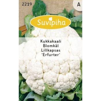 Suvipiha Lillkapsas Erfurter 0,75g A