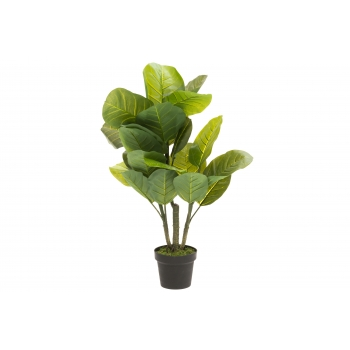 Kunstlill Viigipuu Lyrata 90cm potis