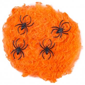 Ämblikuvõrk Ämblikutega