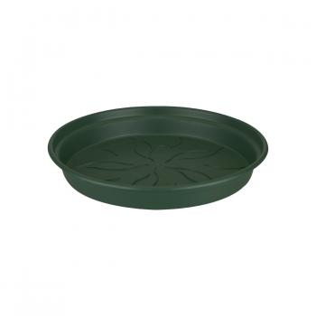 Lillepotialus Green leheroheline 25cm