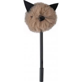 Pastapliiats Kass