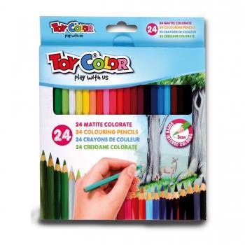Värvipliiatsid Toy Color 24tk