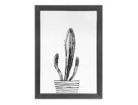 Seinapilt Kaktus 25x35cm