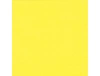 Salvrätikud 33x33cm 20tk, kollane