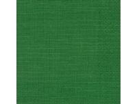 Salvrätikud 33x33cm 20tk roheline antiik