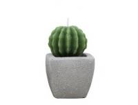 Küünal Kaktus 6x6x10cm
