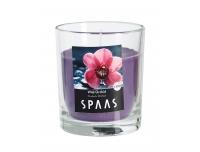 Lõhnaküünal Spaas klaasis 25h Orhidee