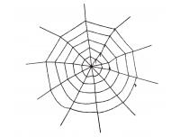 Ämblikuvõrk Gigant 200cm