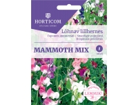HC Lõhnav lillhernes Mammoth mix 5g