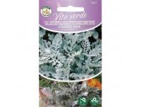 Vilt-ristirohi Vita Verde Candicans 0,1g